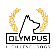 Olympus HLD