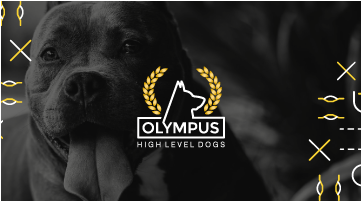 Olympus High Level Dogs
